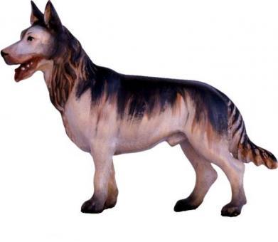 ECH - Schäferhund 23cm color