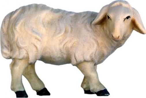 Modern Schaf schauend 15cm color